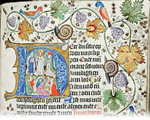 Book of hours_manuscript_medieval